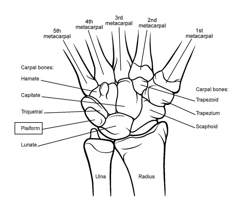 Physiotherapy for Wrist Fractures